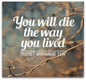 50 Islamic Quotes On Life With Images